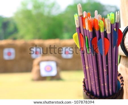 Arrows and target archery in field - stock photo