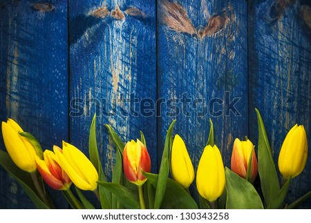 Art abstract background with spring tulips on wooden for design - stock photo