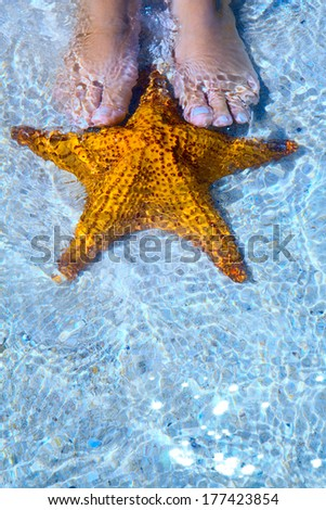 Art Beautiful female legs and starfish on the sea beach - stock photo