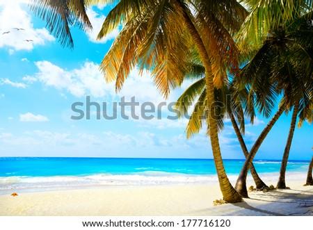 Art  beautiful untouched tropical sea beach - stock photo