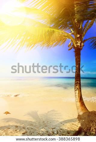 Art caribbean tropical sea beach - stock photo