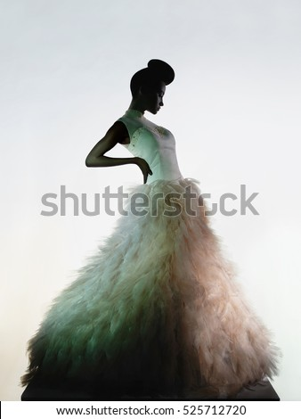 Art fashion studio photo of beautiful elegant woman in luxury evening dress.  Drawing of shadows and light. Light and color effects. Fashion style. Big wedding dress. Fashionable dress. Female dress.