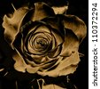 art floral vintage monochrome background with one blurred silk rose in beige, gold, black and brown colors - stock photo