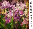art grunge floral vintage background with gladiolus, for family holidays - stock photo