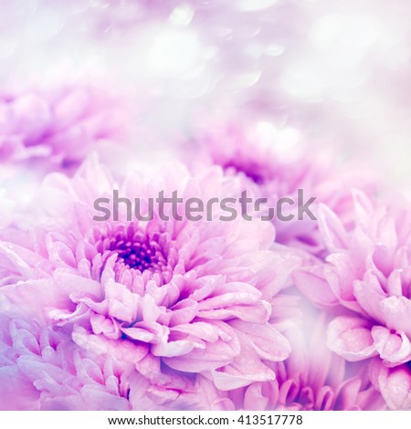 Art.Soft blurred of gerbera flowers with soft bokeh in pastel tone for background.1:1 - stock photo