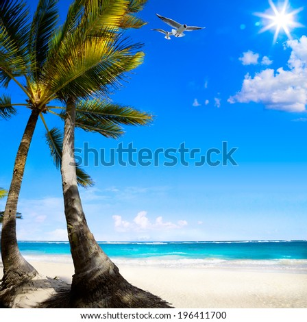 Art Untouched Caribbean tropical beach  - stock photo