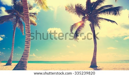art Untouched tropical beach in caribbean sea - stock photo