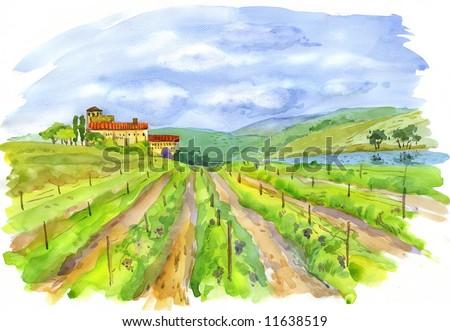 Art, vineyard, landscape, painting (watercolor) - stock photo