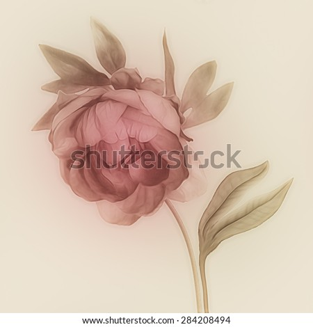 art vintage watercolor blurred floral pattern with pink purple peony isolated on light gold background with space for text  - stock photo