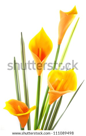 artificial cala lily on white background - stock photo