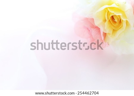 artificial flower and fabric for background image