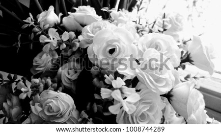 Artificial flowers window black white stock photo image royalty artificial flowers in the window black and white mightylinksfo