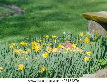 Artificial frog statue near the flowers - stock photo