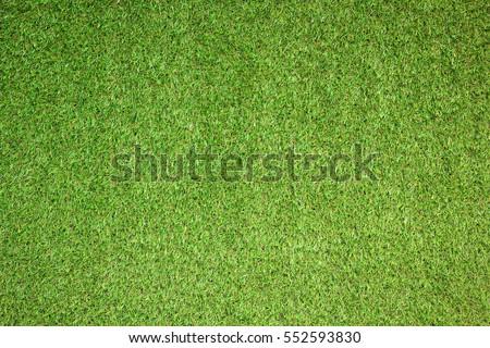 carpet grass. artificial grass background carpet