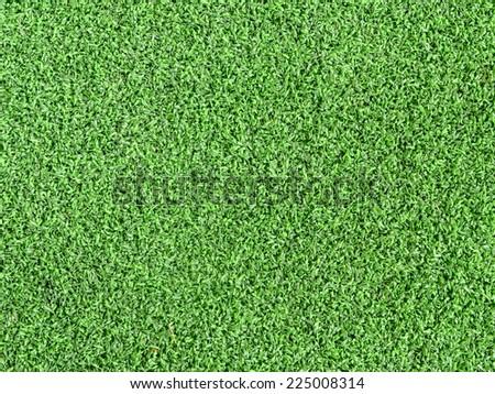 Artificial Grass Field Landscape View - stock photo