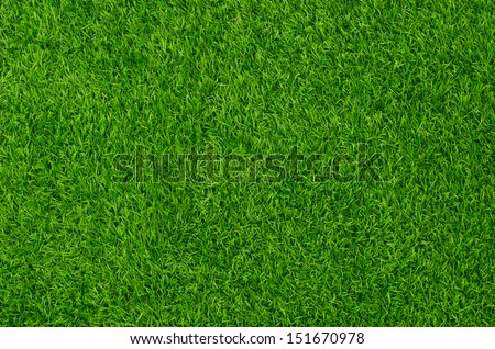 Artificial Grass Field Top View Texture - stock photo