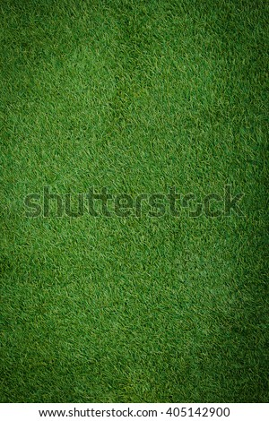 Artificial Grass Field Top View Texture.