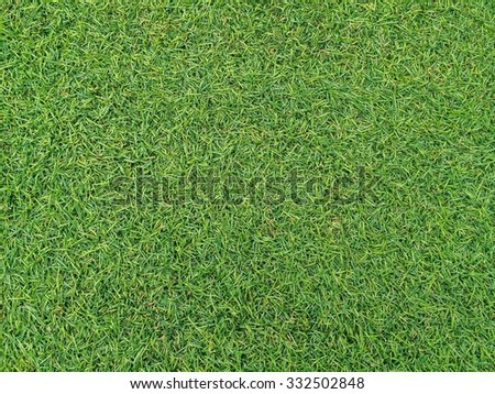 Artificial grass or AstroTurf - stock photo