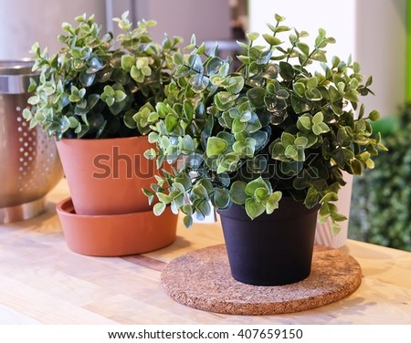 Artificial Green Plants in Flower Pots for Home and Office Decoration without The Care. - stock photo