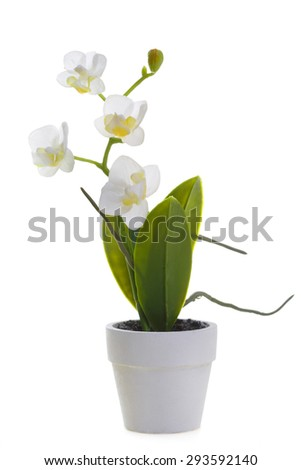 Artificial orchid in a pot isolated on white background - stock photo