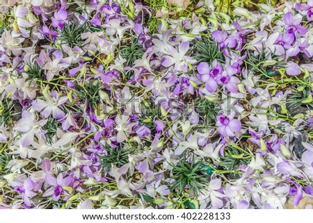 artificial purple orchid flower for abstract texture background
