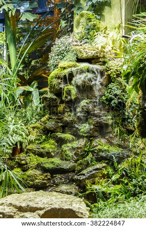 artificial stone waterfall and plants in the greenhouse