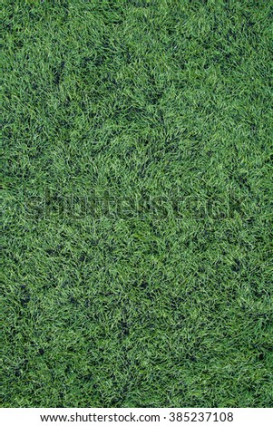 Artificial turf - stock photo