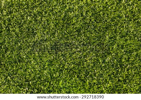 Artificial turf taken from the top.