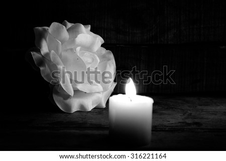 Artificial white rose with candle black and white - stock photo