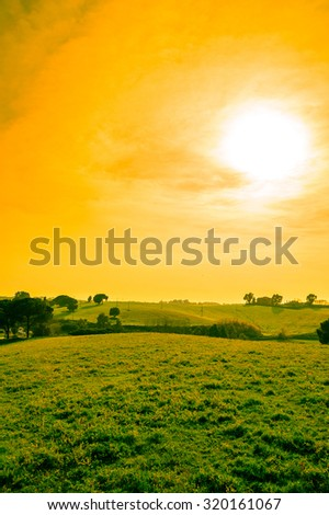 Artistic edit of hill meadows and fields with trees at sunset, with cloudy orange sky and copy space for text