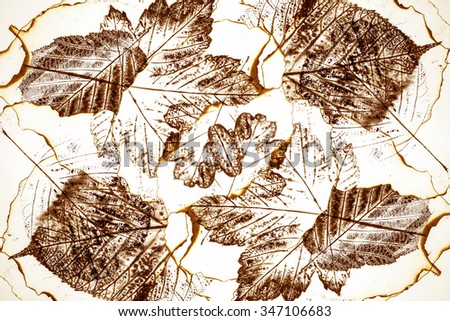 artistic image - imprints of leaves - Graphics - monotype