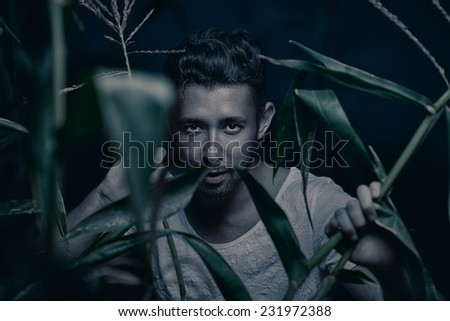 Artistic portrait of young brutal handsome man in field of corn