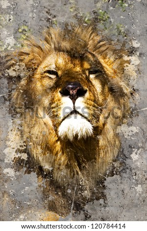 Artistic portrait with textured background, lion head - stock photo
