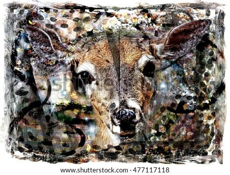 Artistic White Tailed Doe Deer Collage Illustration