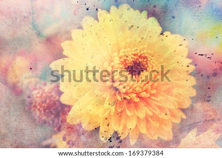 artwork with beautiful yellow aster's flower and watercolor splatter - stock photo
