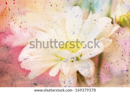 artwork with chamomile's flower and pink watercolor splashes - stock photo