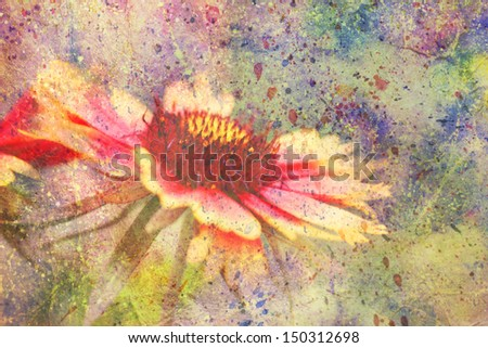 artwork with red and yellow flower and colorful watercolor splatter - stock photo