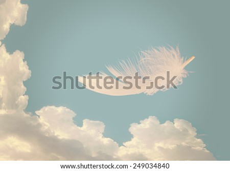 As light as a feather, free as a bird. Metaphor. Filtered image, sky background. - stock photo