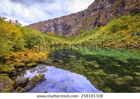 Asbyrgi canyon in Northern Iceland - stock photo
