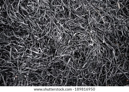 Ash from burning rice fields - stock photo