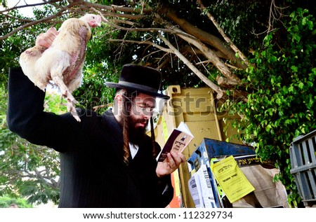 "ASHDOD - SEPTEMBER 15 : Ultra orthodox Jewish man waves a chicken over himself during the ""Kaparot"" ceremony held on September 15 2010 in Ashdod Israel. - stock photo"