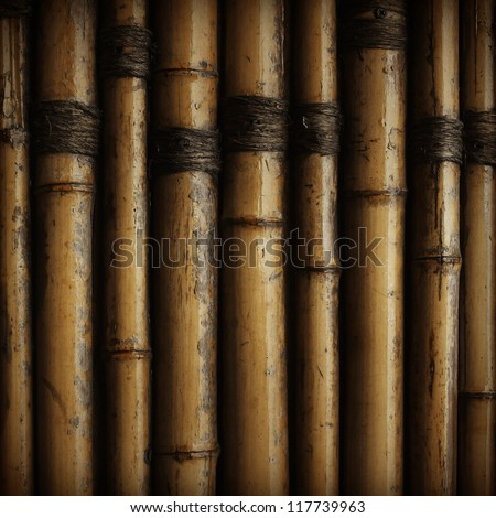 asia, bamboo, brown, burnt, china, fence, hardwood, japan, macro, nature, panel, pattern, pipe, plant, reed, row, stained, stem, striped, torn, tree, tropical, twig, vertical, wall, wood,  stick, rope