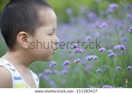 asian baby boy smelling the flower  in the garden