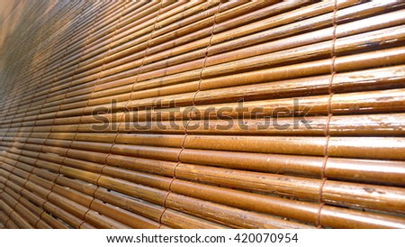 Asian bamboo blind pattern background with palm tree shadow
