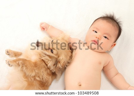 Asian boys and dachshund lying - stock photo