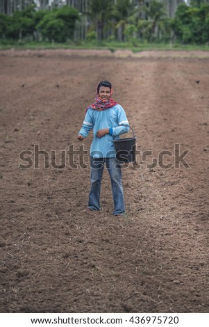 Asian farmer sow the paddy to grow rice.