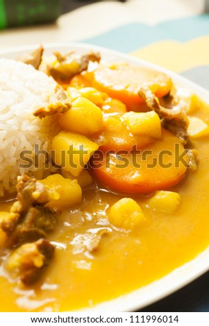 Asian food, rice and curry beef
