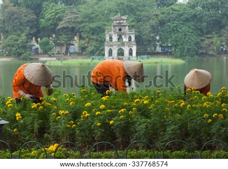 Asian gardener taking care of an yellow botany garden on the bank of Hoan Kiem (Sword) lake and Turtle Tower on a small island behind. - stock photo