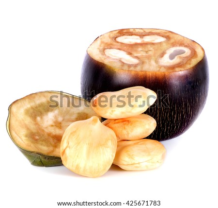 Asian Palmyra Palm,Toddy Palm,Sugar Palm on white background