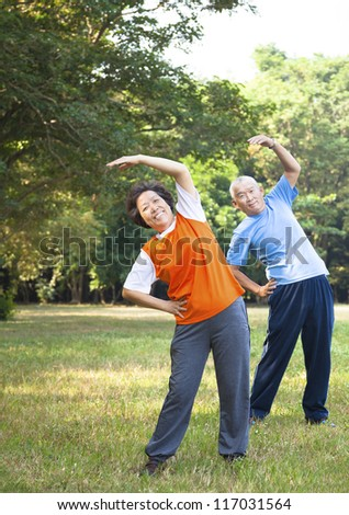 asian senior couple in the park - stock photo